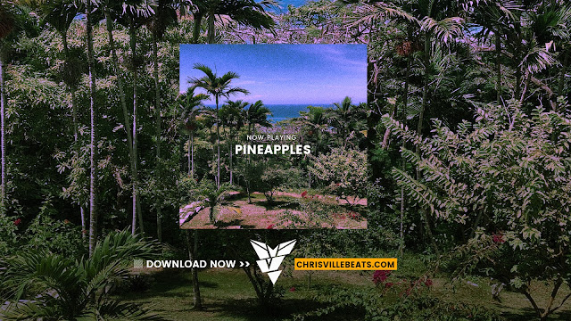 [Free] NBA Youngboy x Kevin Gates Type Beat – Pineapples