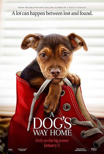 A Dog's Way Home [2019] [BBRip 1080p] [Dual Audio]
