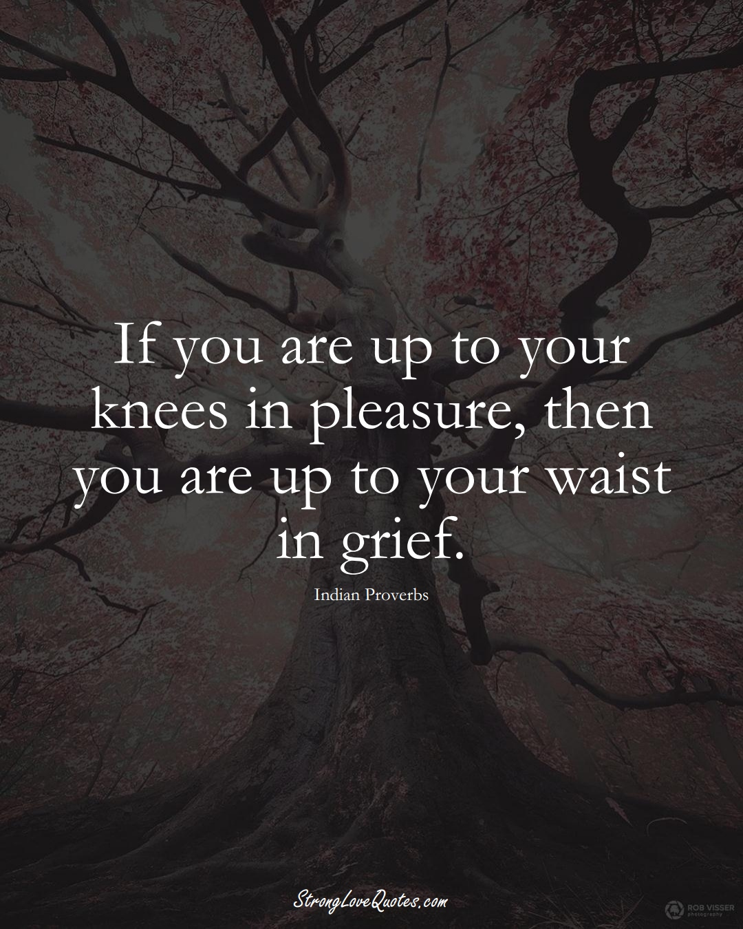 If you are up to your knees in pleasure, then you are up to your waist in grief. (Indian Sayings);  #AsianSayings