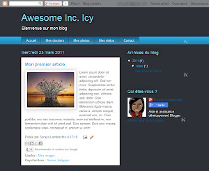 Awesome Inc. Icy Theme