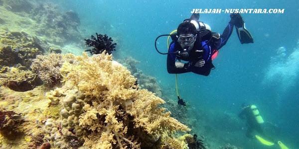 akomodasi wisata private trip pulau pramuka