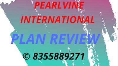 Pearlvine International Plan Review