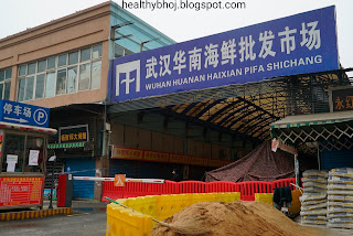 Wuhan seafood market