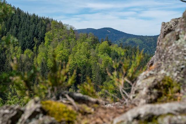 Premiumwanderweg Murgleiter | Etappe 2 von Gernsbach nach Forbach | Wandern nördlicher Schwarzwald 21