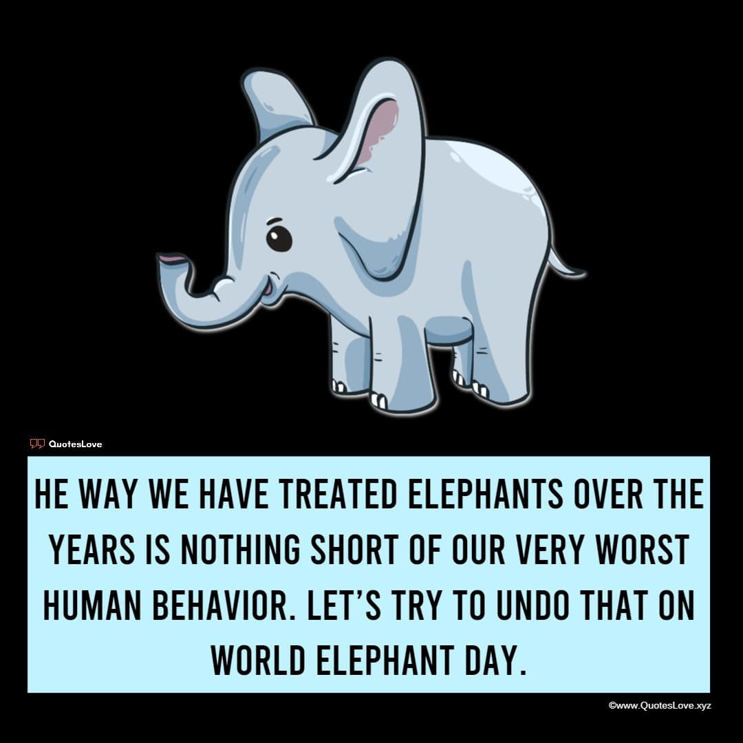 World Elephant Day Quotes, Sayings, Wishes, Greetings, Images, Pictures, Poster