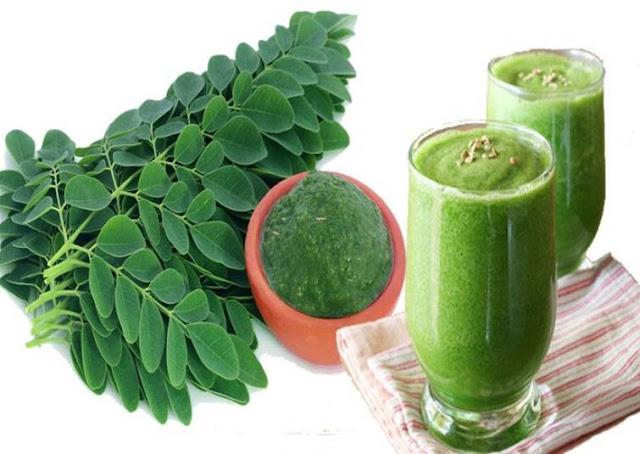 16 Manfaat Daun Kelor Untuk Kesehatan, Kandungan dan Efek Samping Daun Kelor