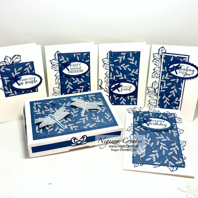 Dragonfly Gift Box For Notecards