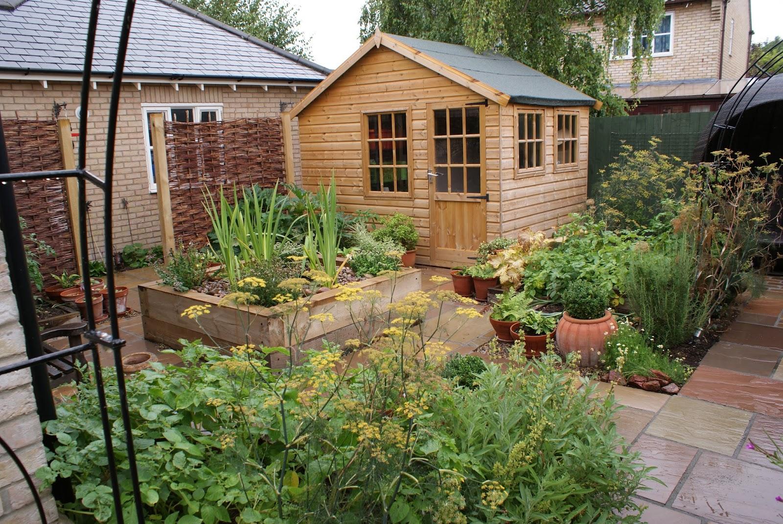 town garden design in cambridge courtyard  garden