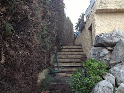 Limpieza de jardines - Ruepra Jardinería