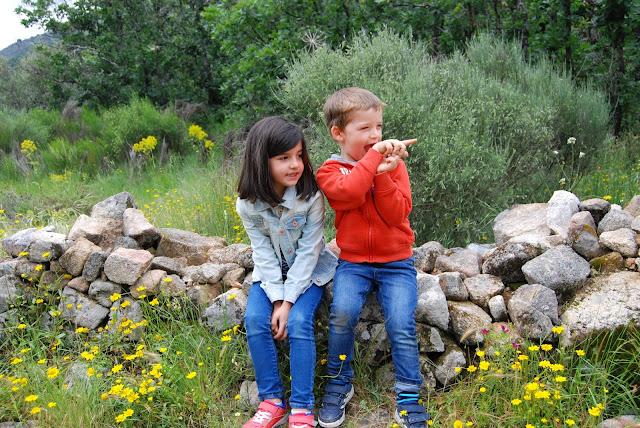 Dos niños sentados sobre un muro de piedra en medio del campo