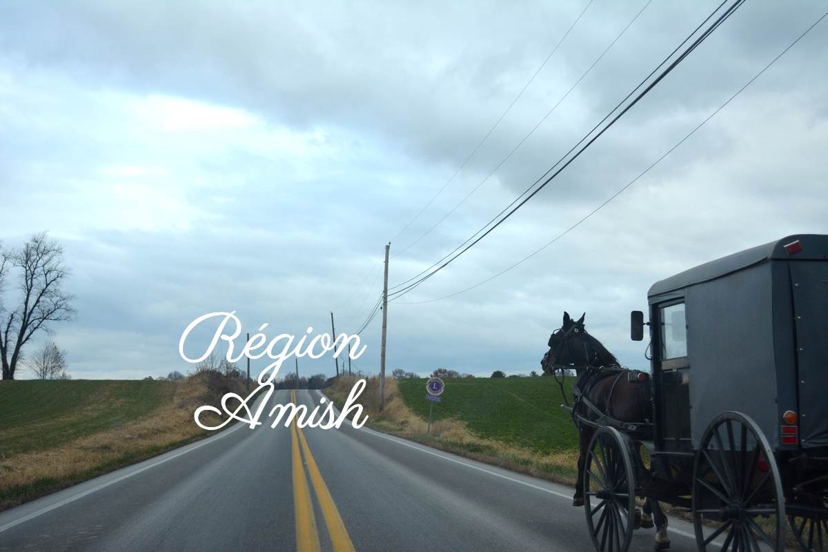 Campagne Amish