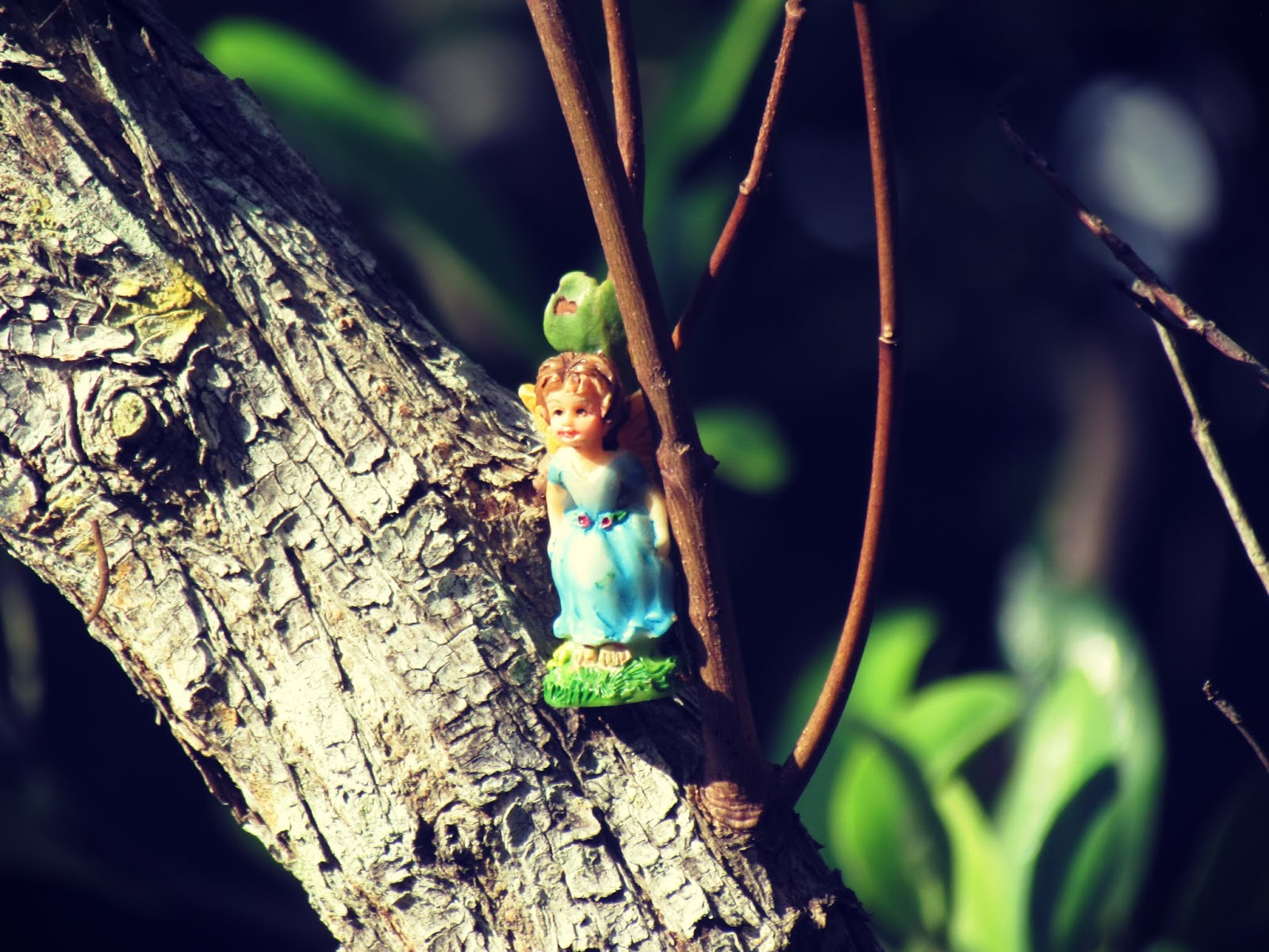 A fairy girl up in the trees in the forest of Hammock Park Butterfly Garden in Dunedin, Florida