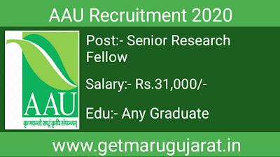 aau senior research fellow recruitment, aau recruitment