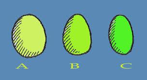 gambar telur tetas yang baik digunakan