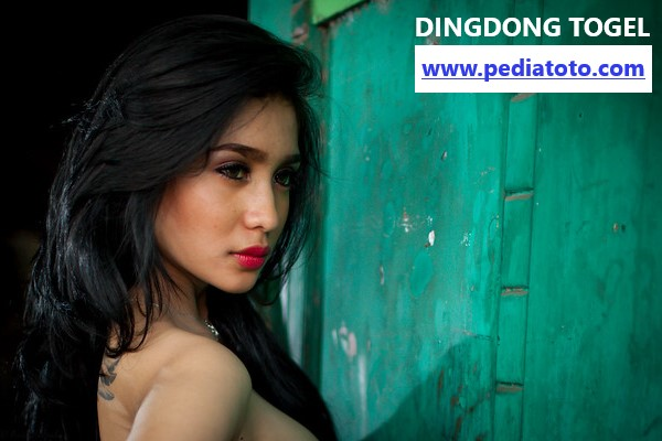 Link Alternatif Dingdongtogel.com