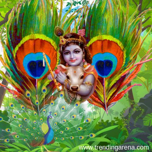 best Krishna images
