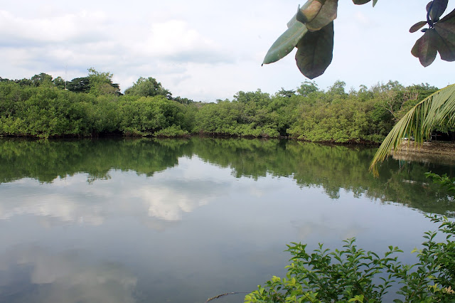 Justmom Food Review Cebu 2020 Lily's Restobar, Papa Kit's Marina and Fishing Lagoon view 1