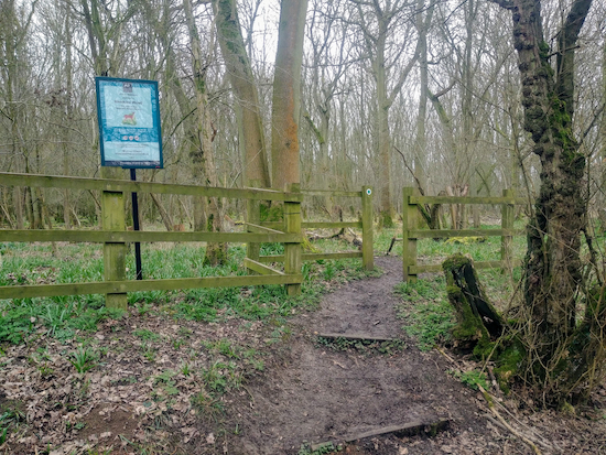 The entrance to Hawkins Wood mentioned in point 3 above