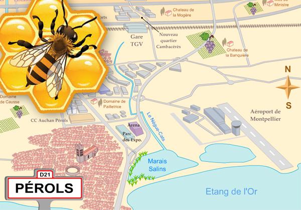Les abeilles à Pérols