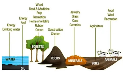 Types of Natural Resources like Water, Wind, Forest, Soils, Animals