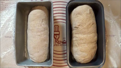 Honey wheat bread dough in greased bread loaf pans.