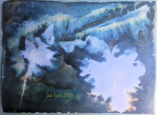 Wet cyanotype_Sue Reno_Image 436