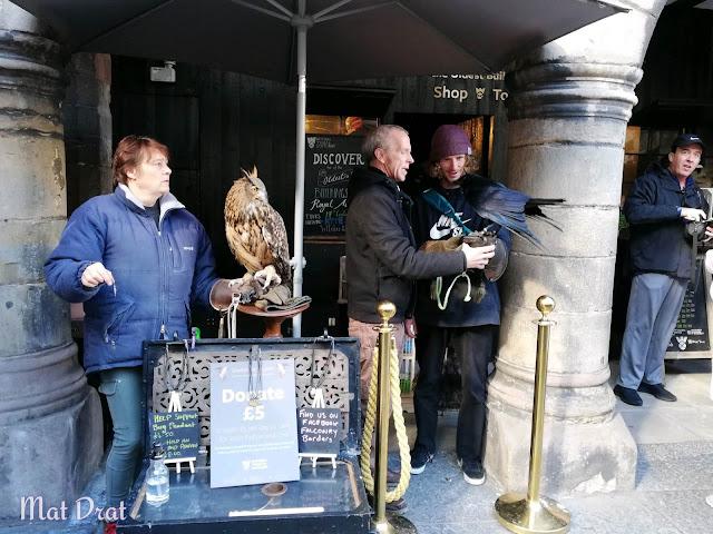 Edinburgh Castle Eagle