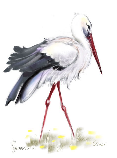 White stork Bird painting by Artmagenta