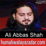 https://www.humaliwalyazadar.com/2018/08/syed-ali-abbas-shah-nohay-2019.html
