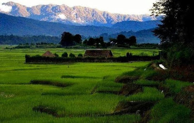 ZIRO VALLEY, Arunanchal Pradesh
