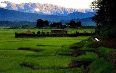 ZIRO VALLEY, Arunanchal Pradesh