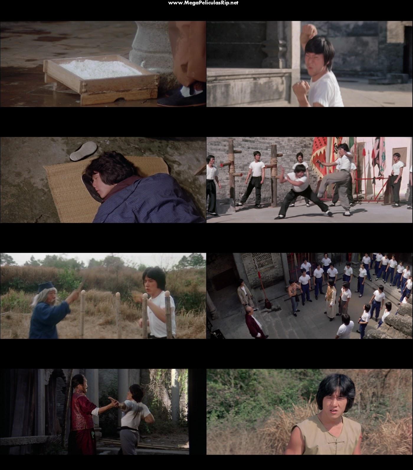 La Serpiente A La Sombra Del Aguila 1080p Latino