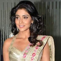 Shreya hot in  transparent saree