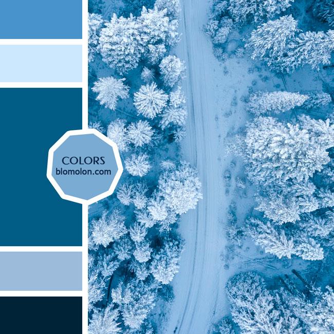 variedad_en_color_moodboard_85