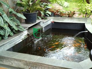 Alam indah asri adalah tukang kolam favorit warga jabodetabek dan bandung