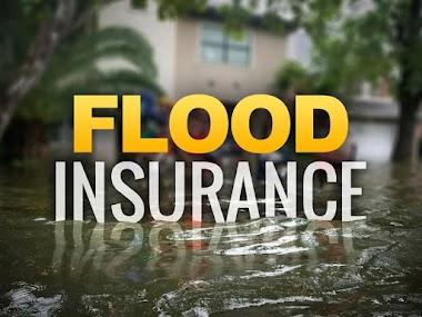 Why Flood Insurance ?