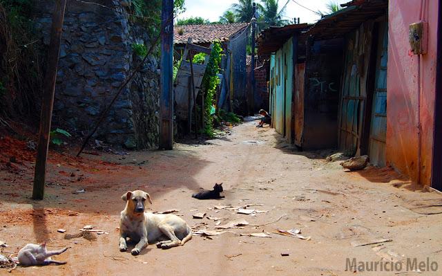 Rua desolada: não há presença do estado. É um caminho sem saída (crédito: Maurício Melo)