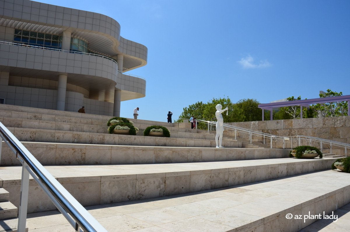 a recollection of a visit to the jp getty museum Information on upcoming exhibitions at the getty center in los angeles and the  getty  the exhibition explores themes of family, memory, mortality, and the.