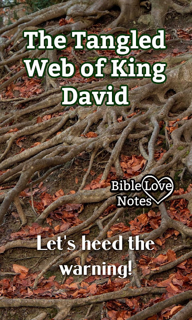 King David teaches an important lesson about tangled webs. let's heed it.