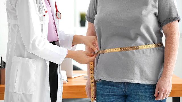 Functional Neurology: How Obesity Can Affect Brain Health