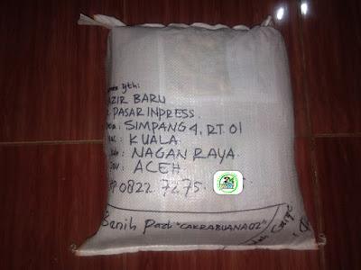 Benih Pesanan   NAZIR BARU Nagan Raya, Aceh.   (Sesudah Packing)