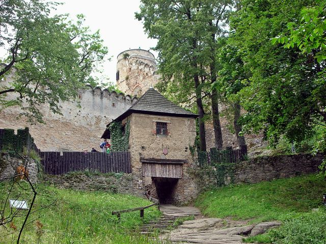zamek, warownia, obronny, drzewa