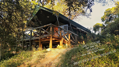 Tented Camp, Tamboti