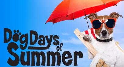 Dog Days Lake Ozarks Menu