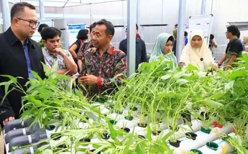 rekayasa pertanian