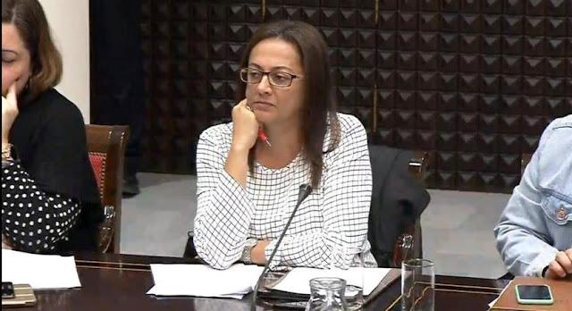 comision%2Btransici%25C3%25B3n%2B%25281%2529 - Nereida Calero denuncia la manera en la que se están instalando las energías renovables en Fuerteventura