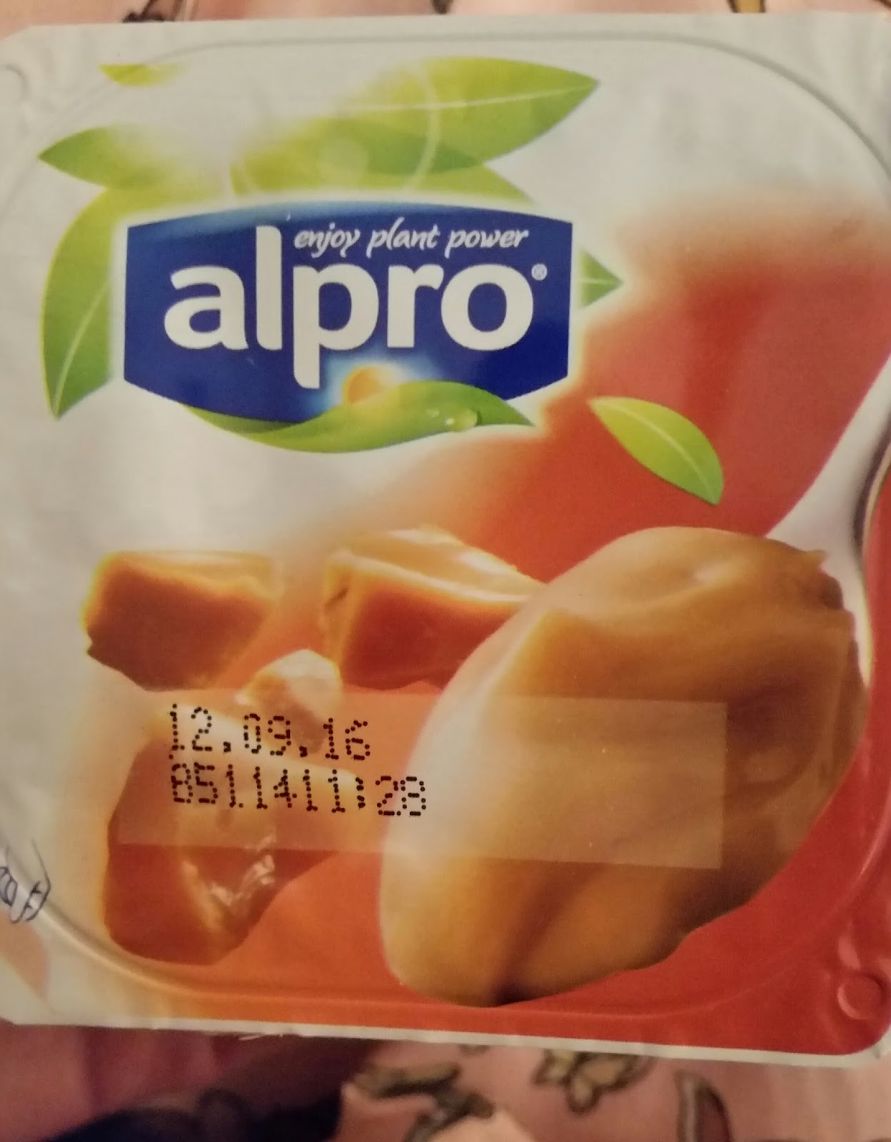 Trust Me Treats Alpro Caramel Soya Dessert Review