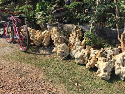 Tukang taman Surabaya Harga Batu Koral Kali