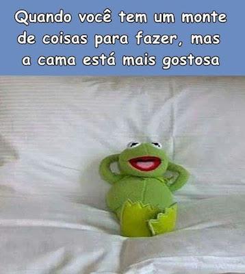 meme, humor, engraçado, melhor site de memes, memes 2019, memes brasil, memes br, eu na vida, zueira sem limites, humor negro, melhor site de humor, preguiça