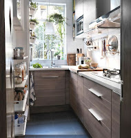 Houseplants decoration for narrow kitchen ideas with contemporary design features open shelves storage and white countertop